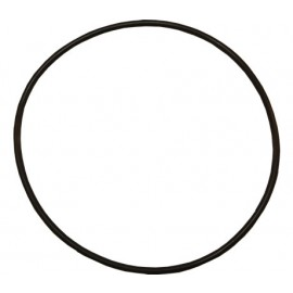Body 'O' Ring - Sta-Rite 5P2R Spares
